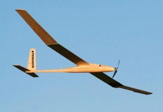Pterosoar micro-UAV