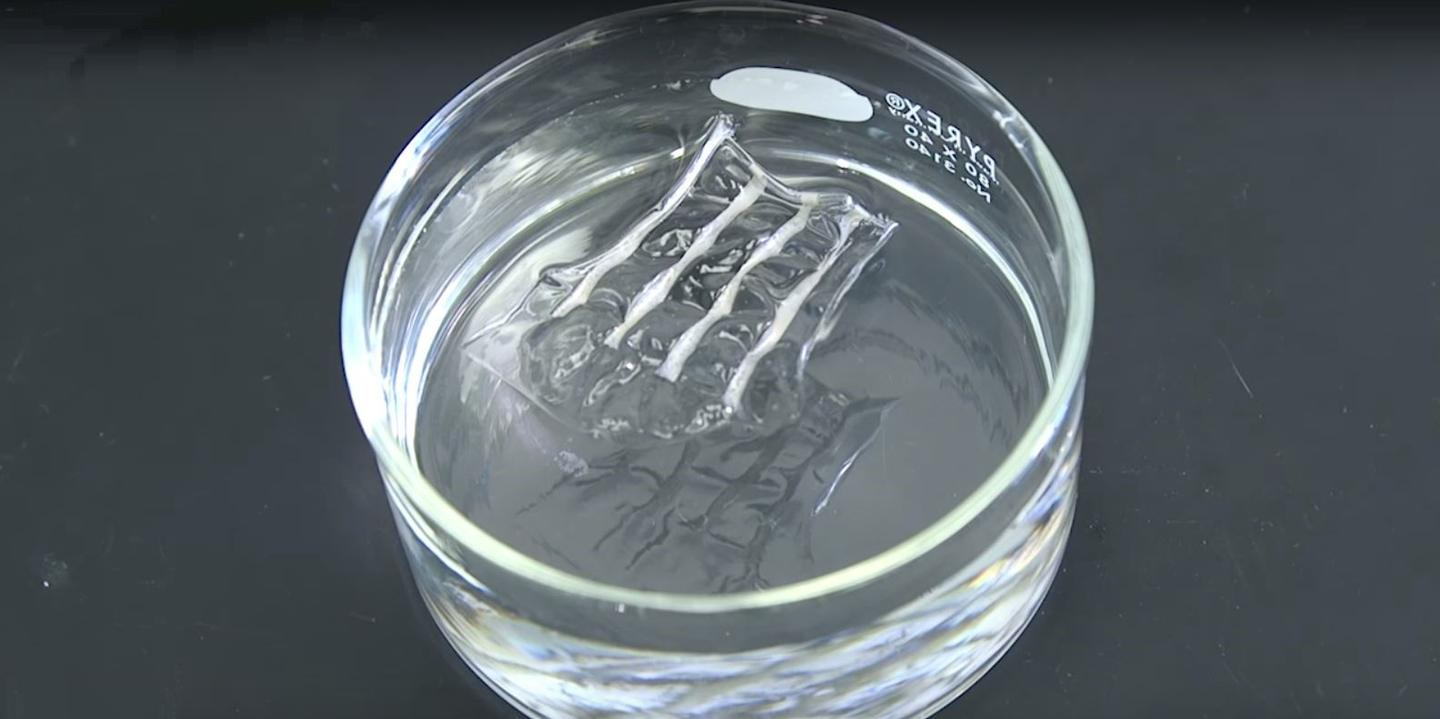 The polymer nanowires dissolve in water as they cool