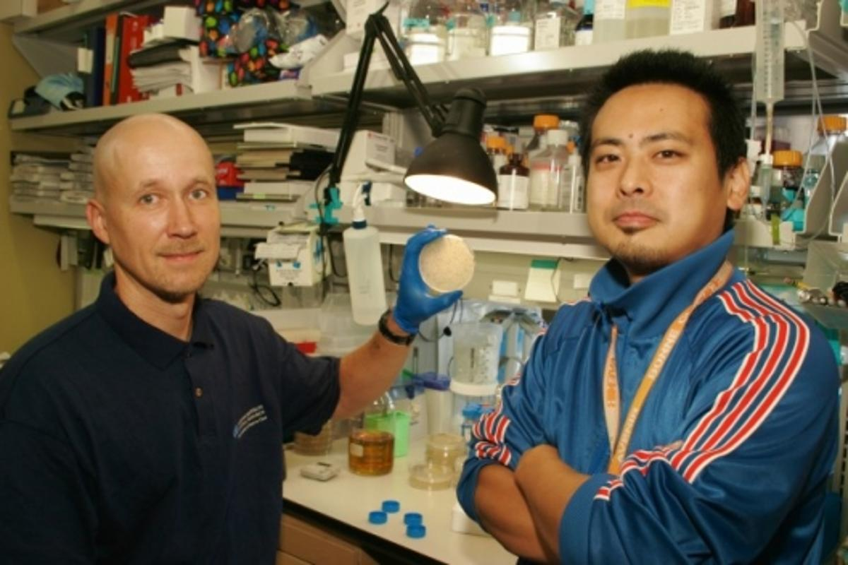 Co-authors Tambet Teesalu and Kazuki N. Sugahara proudly display their laboratory-developed drug-delivery system