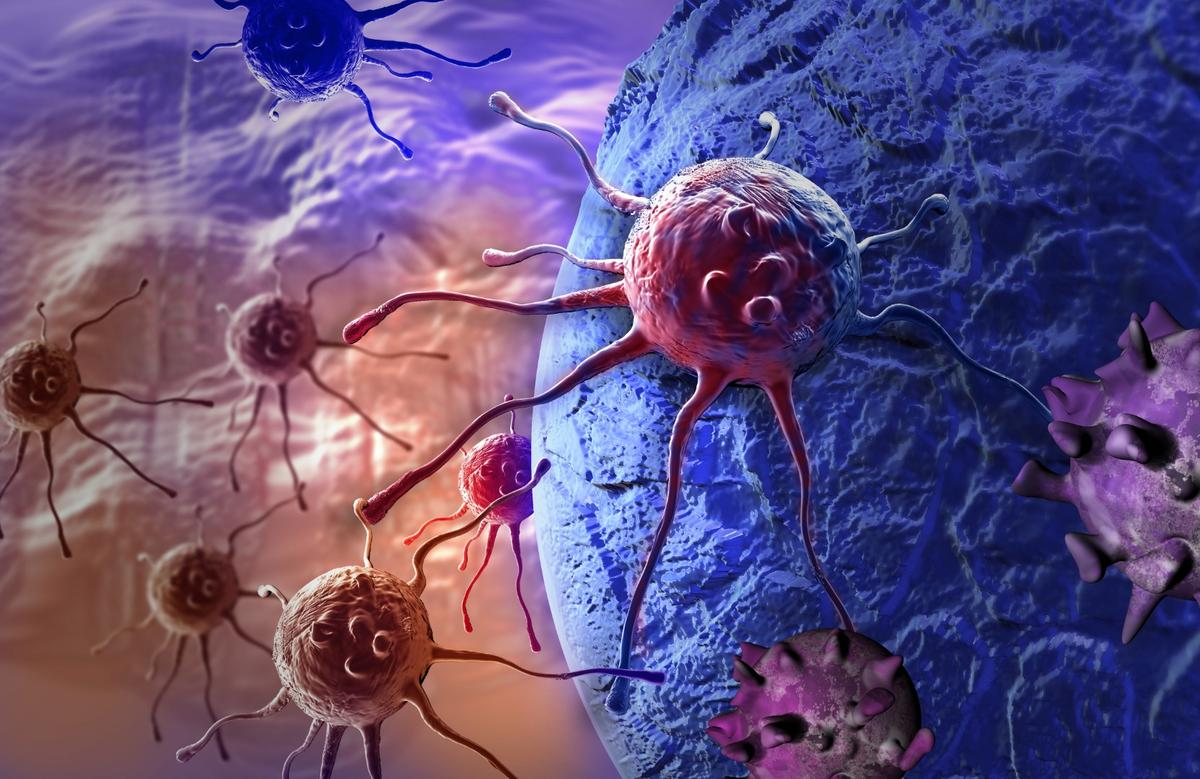 Scientists have come up with a new way to enhance the body's immune system in its fightagainst cancer