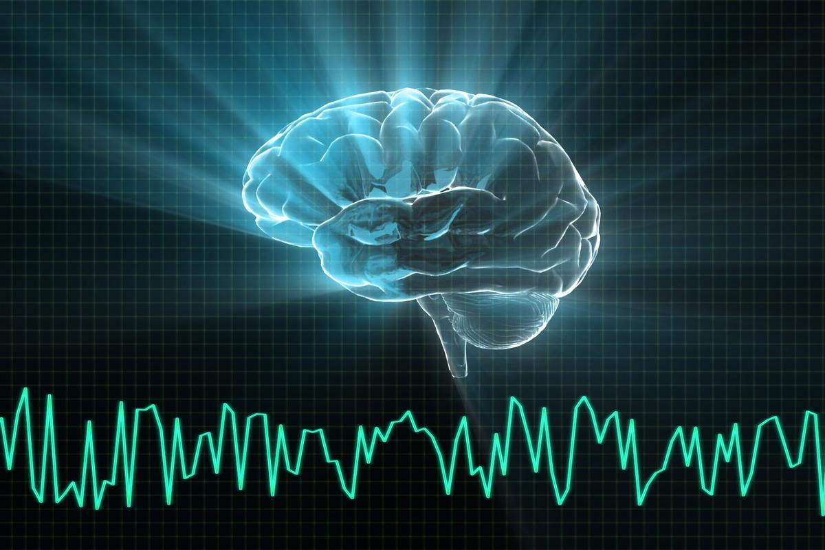 New research has found active gene expression in brain tissue at least 24 hours after collection
