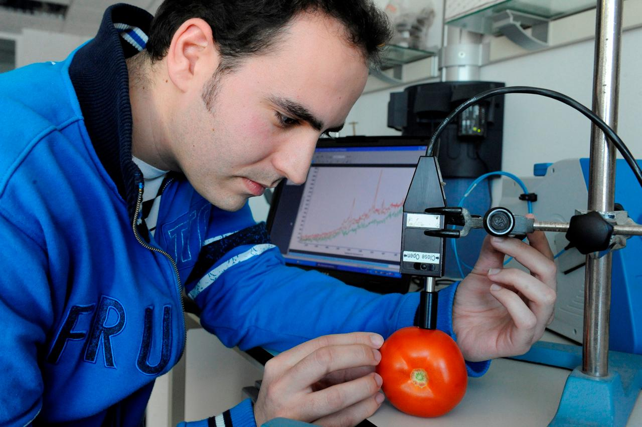Josu Trebolazabala analyses the composition of a tomato using a Raman spectrometer