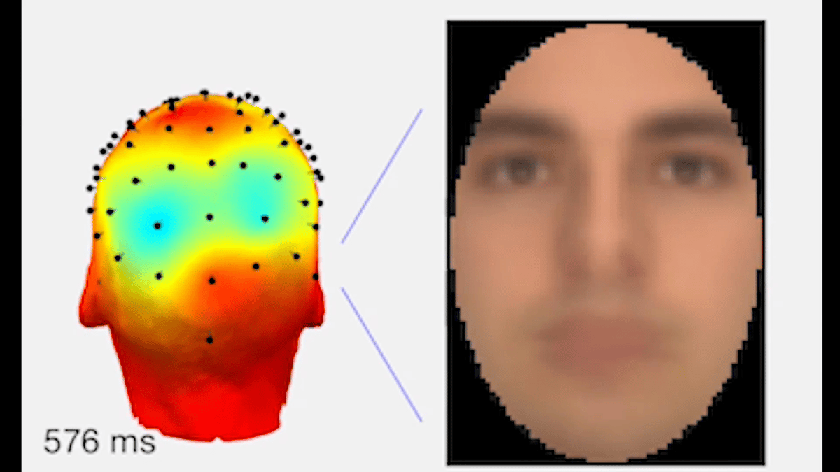 Neuroscientists have developed a system that can digitally recreate images seen through someone's eyes, like faces, from an EEG brain scan