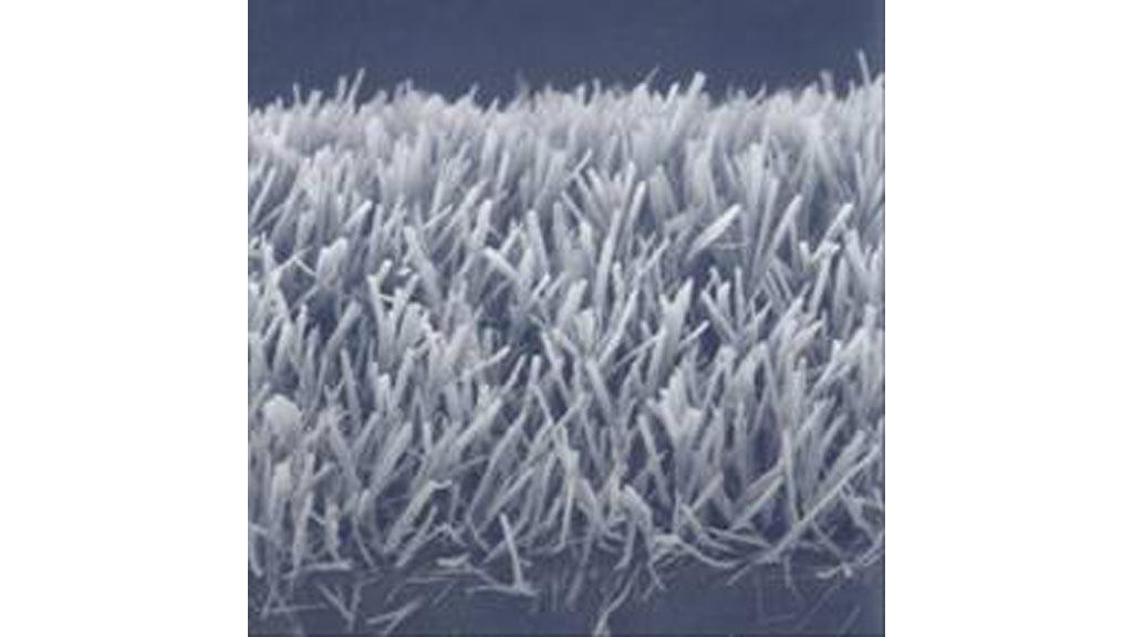 """The nanosized """"forest of peptides"""" can be used as the basis for self-cleaning windows and more efficient batteries"""