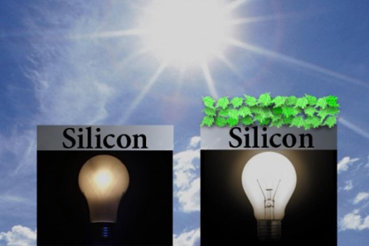 Adding plant proteins greatly enhances silicon solar cells (Image: Julie Turner/Vanderbilt)