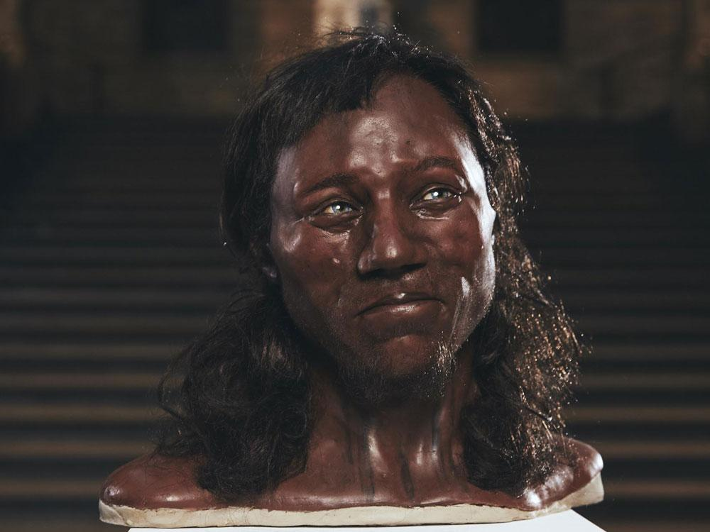 Reconstruction ofCheddar Man, sonamedfor his discovery in Somerset's Cheddar Gorge in 1903