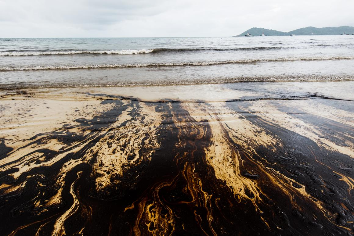 A new type of carbon nanotube sponge containing sulfur and iron could help clean up oil spills more effectively (Photo: Shutterstock)