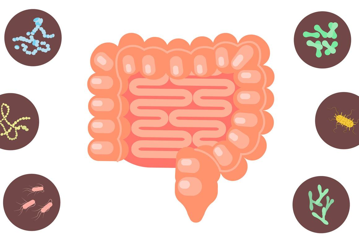 One study hasdescribeda connection between serotonin and gut dysfunction, while another hasrevealedhow microbiome transplants can transfer symptoms of depression from one animal to another