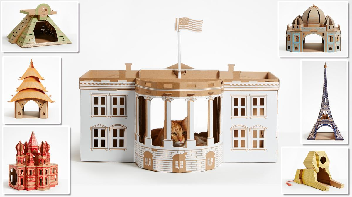 Poopy Cat's latest project puts a cat in the White House