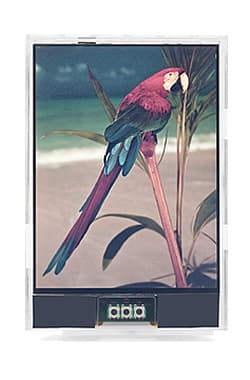Japan Display's paper-like, color, reflective LCD