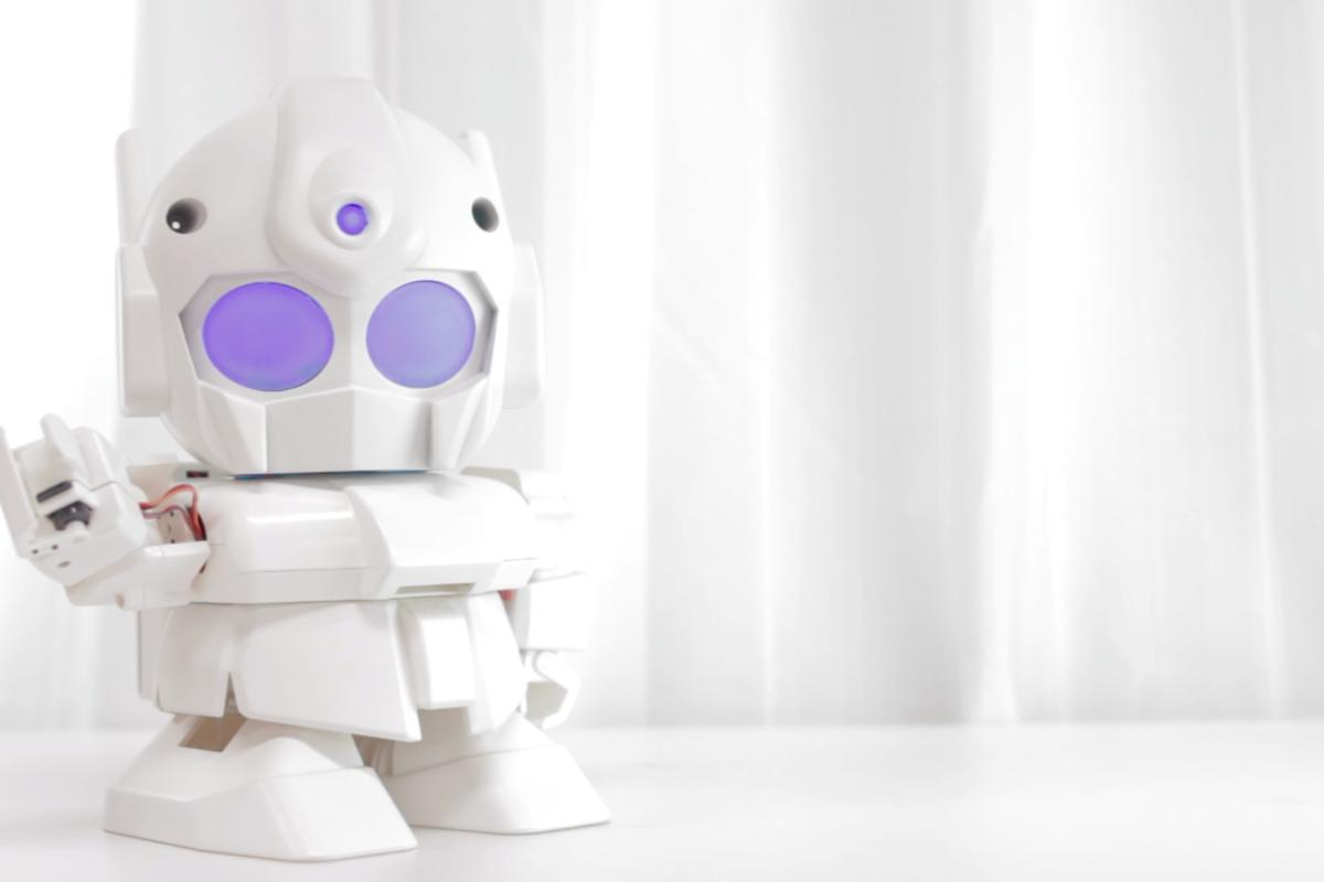 At US$354, RAPIRO is a fraction the cost of other hobby robot kits