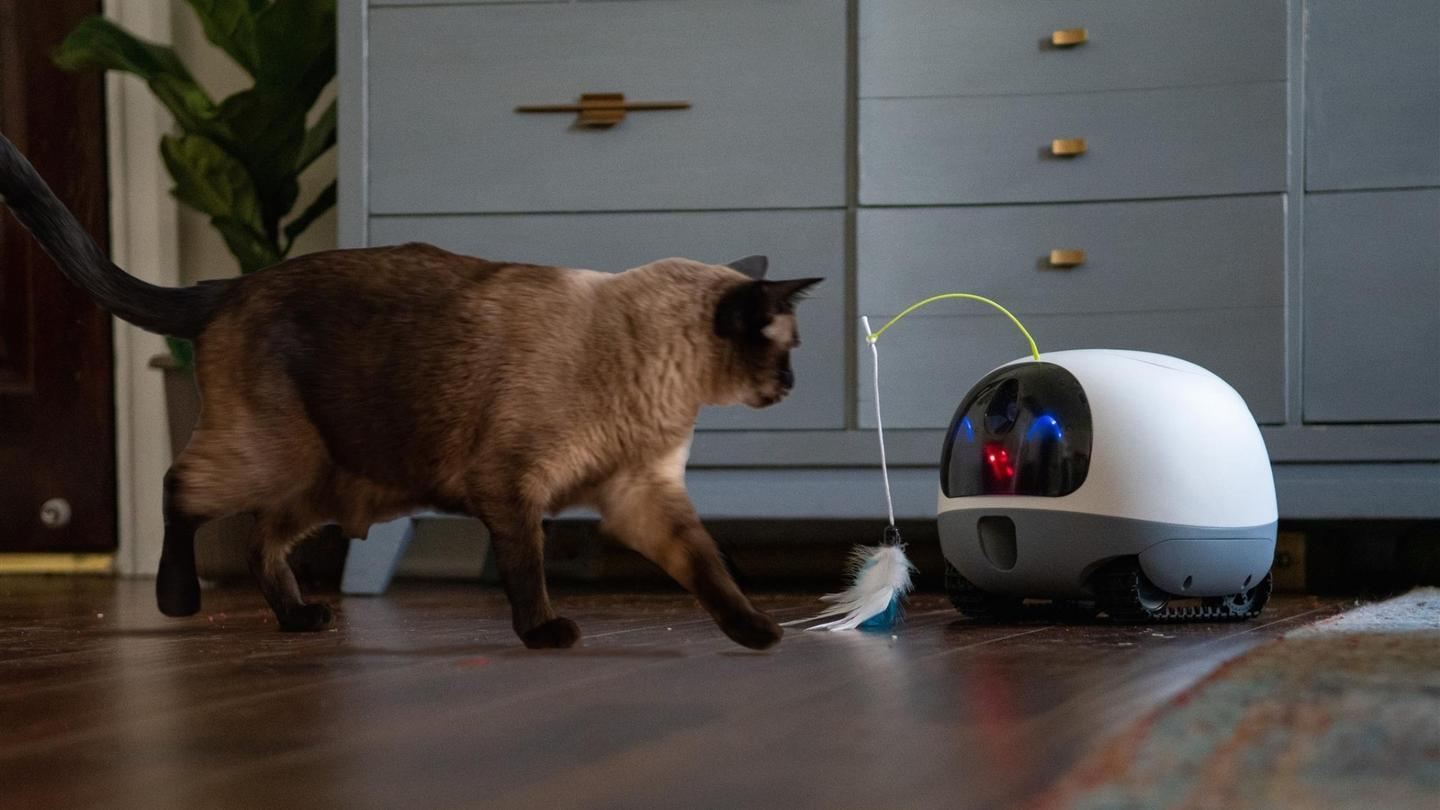 The VAVA Mobile Pet Cam's body is made of industrial-strength PVC, so it should withstand some abuse
