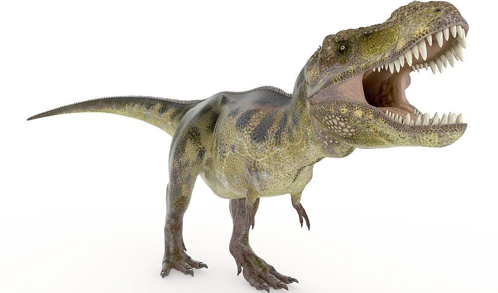 Three-dimensional printing is being used to create precise robotic models of dinosaurs (Image via Shutterstock)
