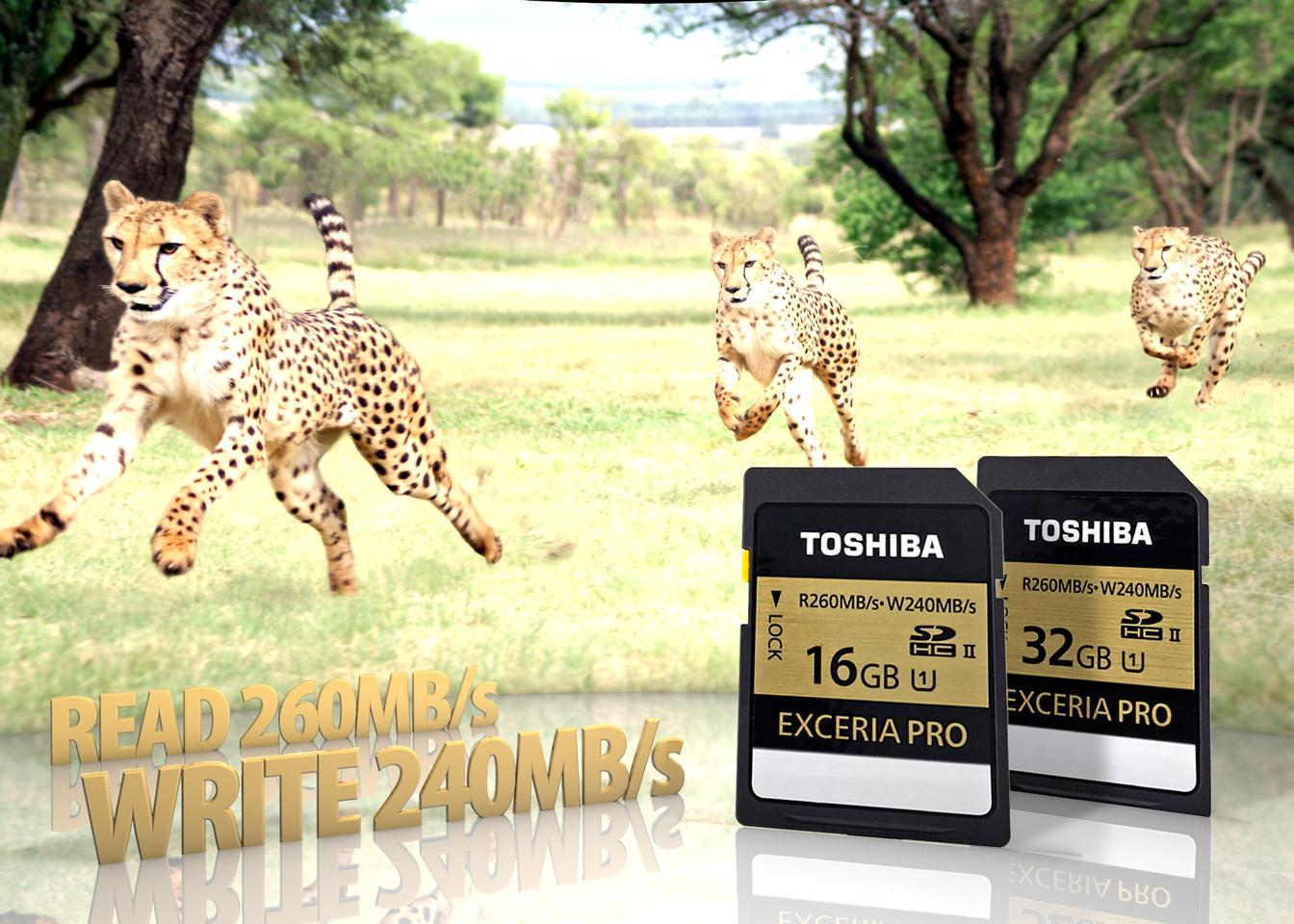 The Toshiba Exceria Pro SD cards will be available in 16 GB and 32 GB capacities