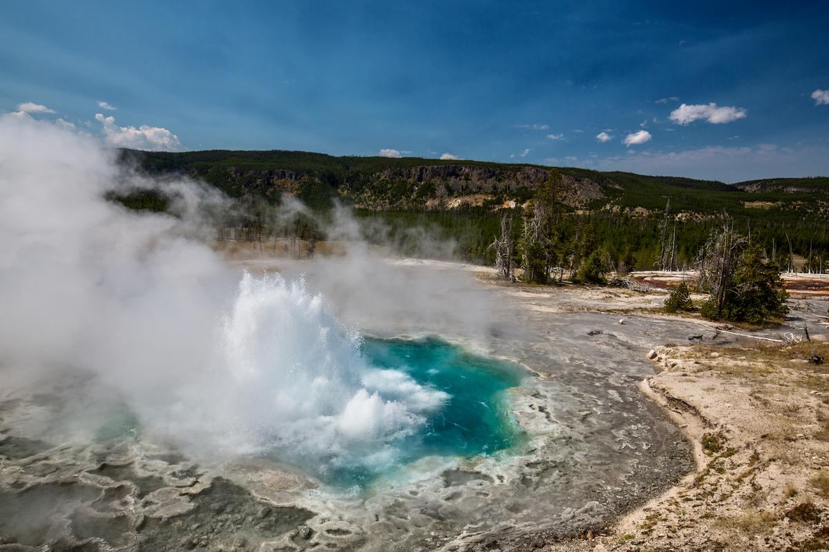 An eruption of Aretemisia Geyser in Yellowstone National Park