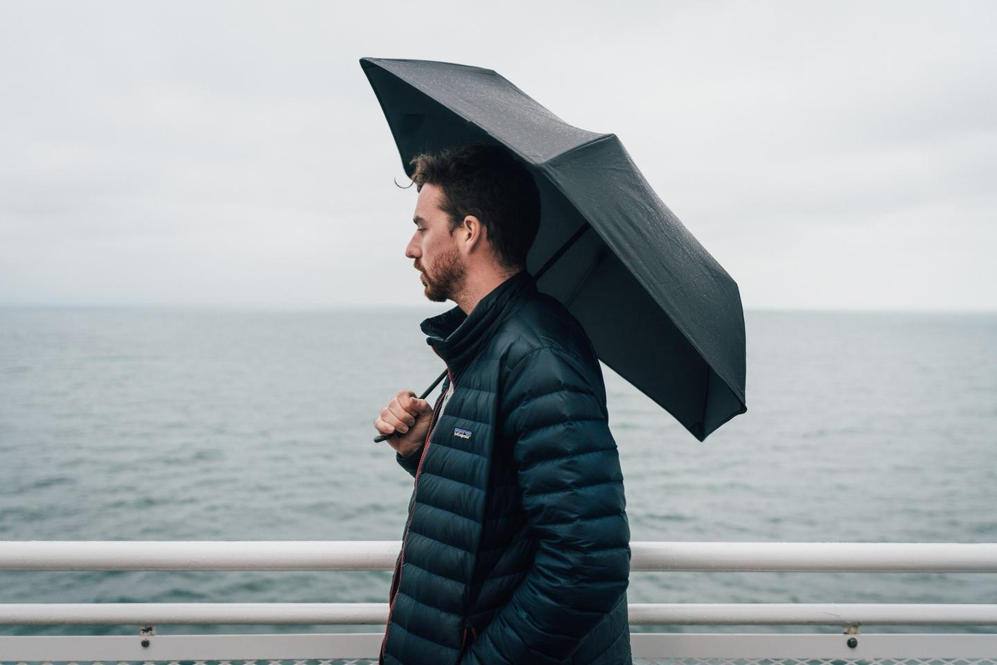 The Hedgehog Carbon umbrella will help you stay dry in stormy weather