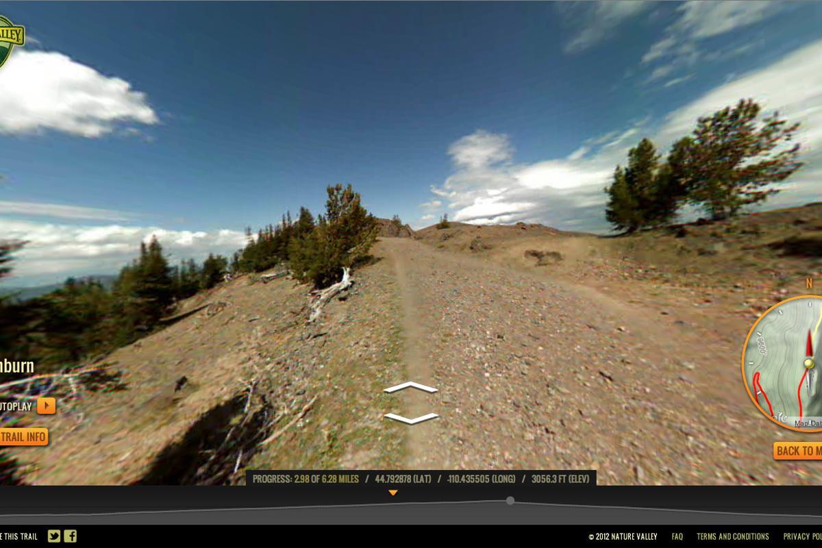Yellowstone's Mt. Washburn