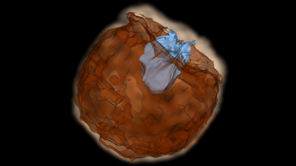 Still from a simulation showing supernova material impacting the companion star at speeds of around 10,000 km per second