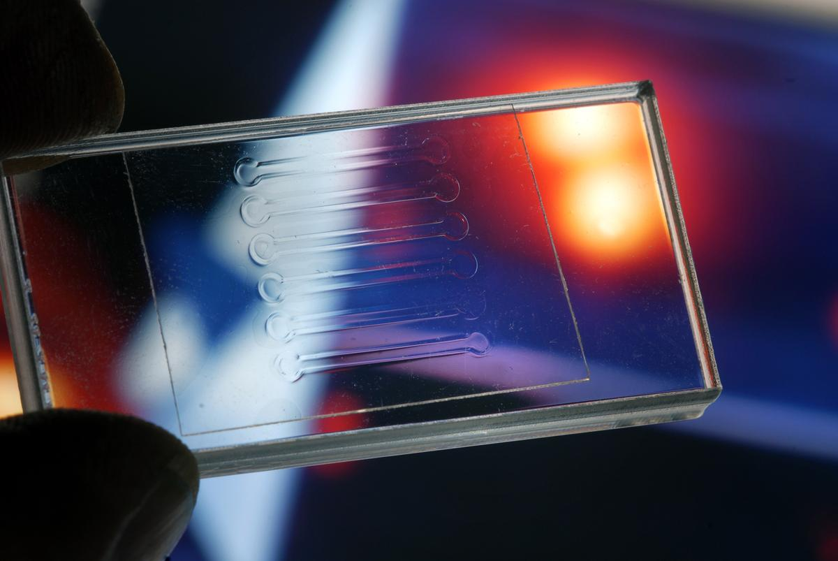 Researchers have developed a method of laser-welding transparent pieces of plastic to one another, based on altering the wavelength of the laser light (Photo: Fraunhofer)