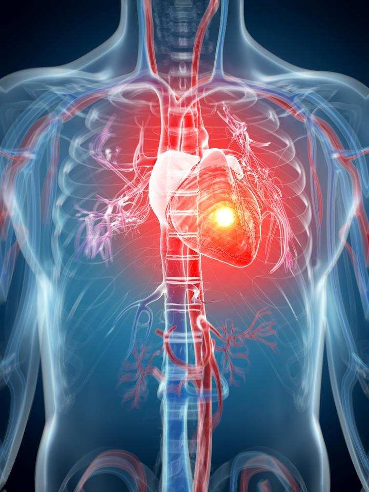 Injecting the cell-loaded hydrogel into living rat hearts saw about 73 percent of the stem cells survive