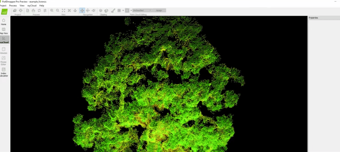 Parrot drones track health of drought-ravaged sequoia trees