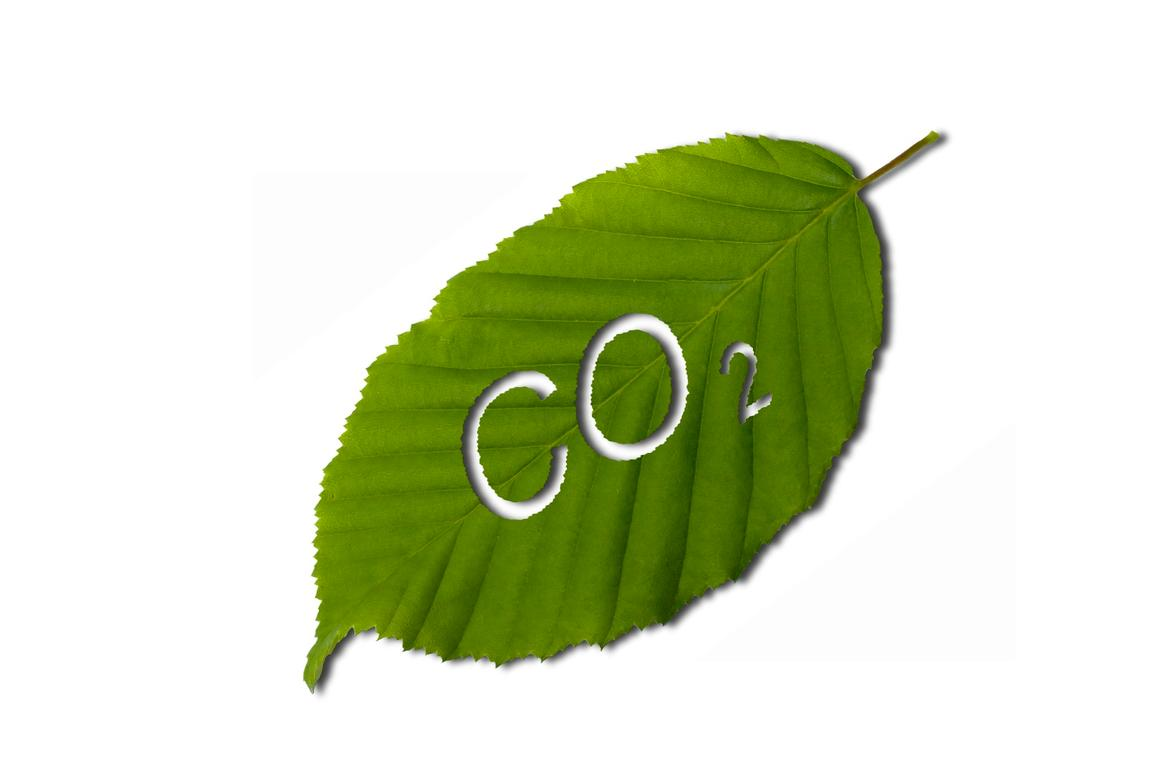 Inspired by the leaf, researchers have developed a molecule that uses sunlight to convert CO2 into CO