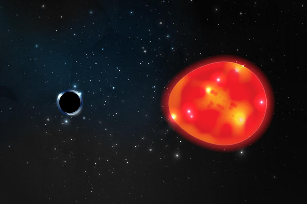 "An artist's illustration of the small, close ""Unicorn"" black hole and the stretching effects it has on its companion star"