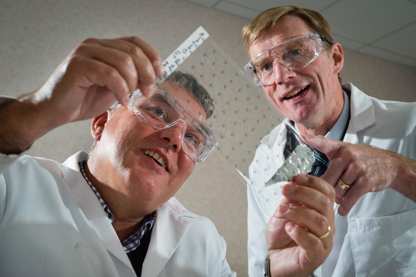 University of Warwick research chemist Prof. David Haddleton (left) and Medherant CEO Nigel Davis, with a sheet of the patch material