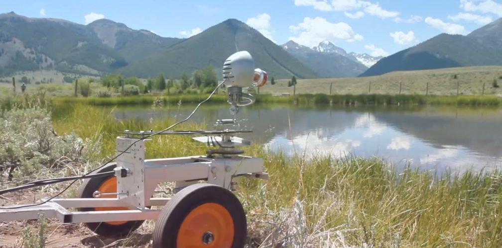 Skippy skips stones across a mountain pond in Sun Valley, Idaho