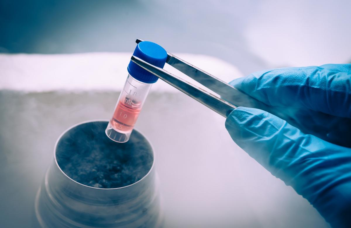 New research suggests adult stem cells could be harvested from patients and repurposed into personalized cancer vaccines