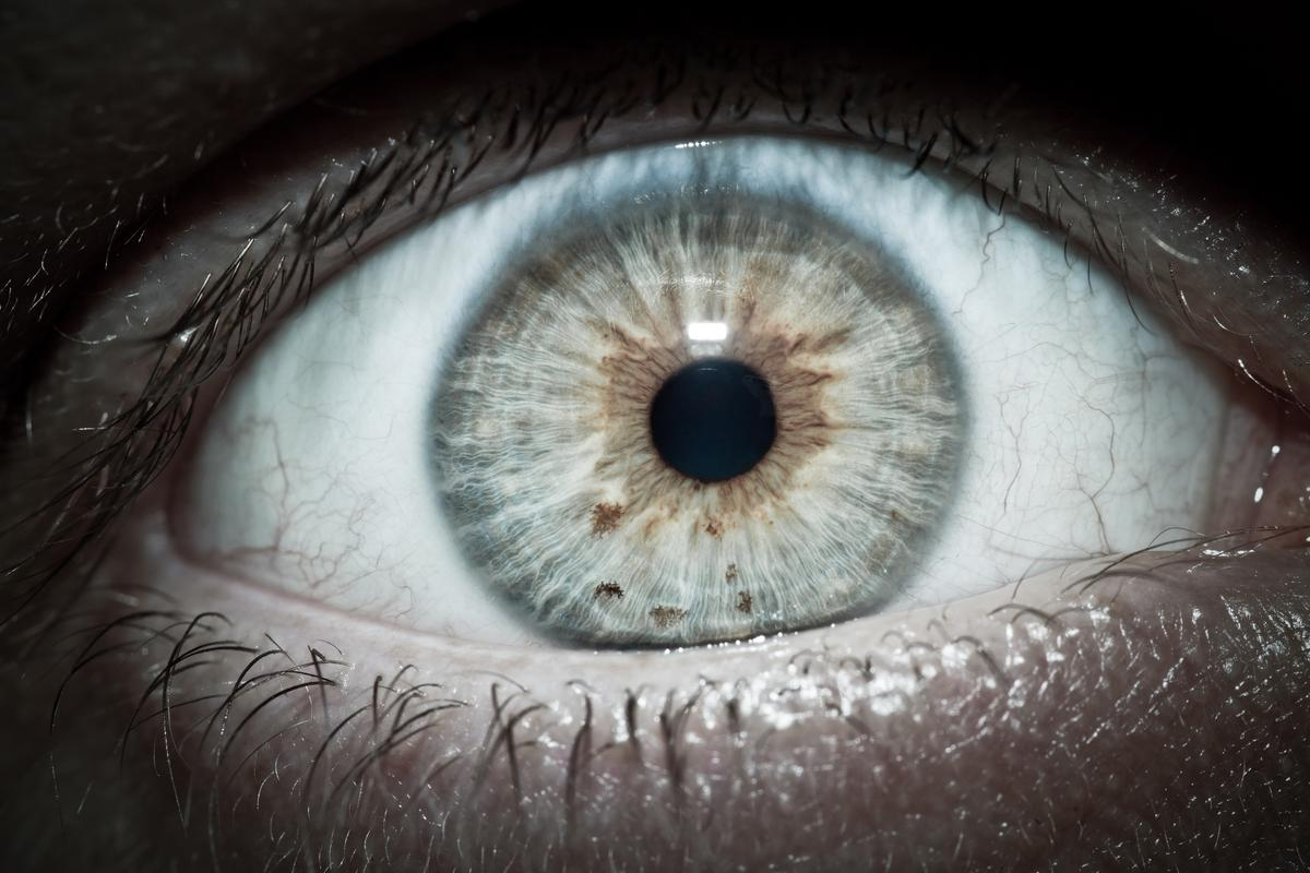 Damaged or defective retinas may someday be replaced by a nanotube film that transforms light into electrical signals and thereby restores regular vision (Photo: Shutterstock)