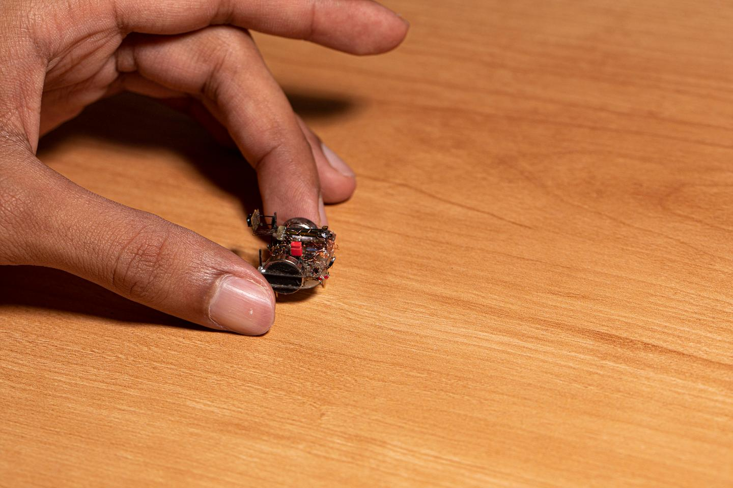 The tiny camera can give sight to an insect-sized robot