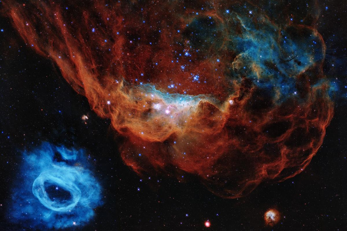 The nebulae have been called the 'Cosmic Reef' because of their resemblance to coral structures in Earth's oceans