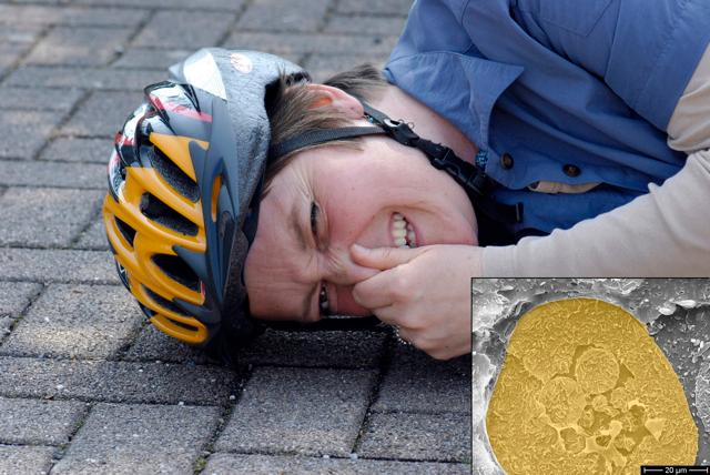 A cyclist with a stinky cracked helmet (Inset: one of the odoriferous microcapsules)
