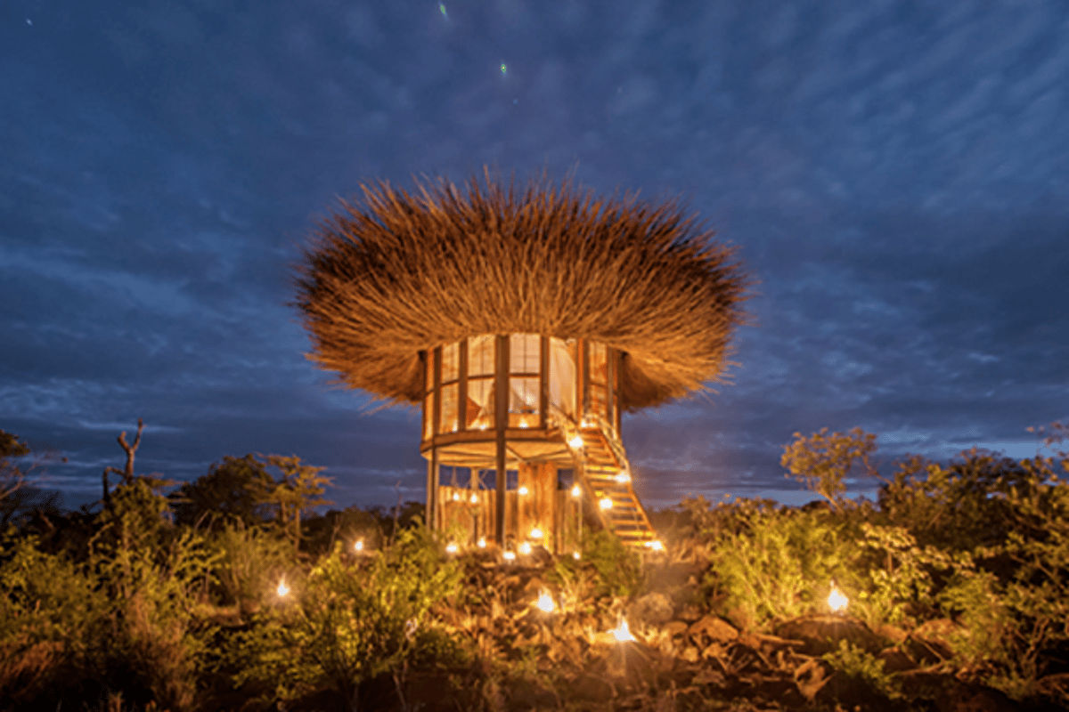 The Bird Nest hotel is Intended as a luxury bush retreat