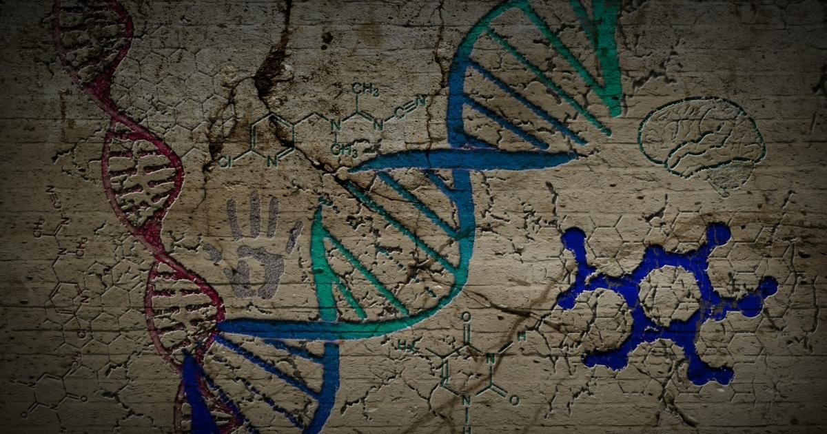 Traces of two unknown archaic human species turn up in modern DNA