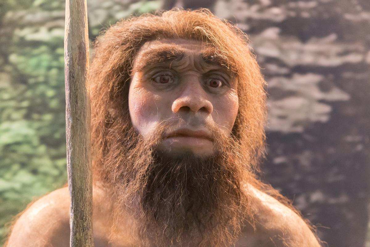 It turns out some bacteria found living in our gut today were with our ancestors long before Homo sapiens arose as a species