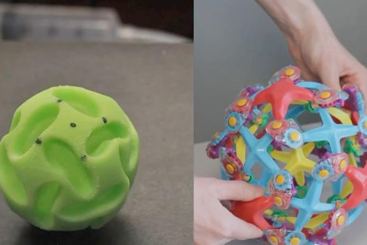 The buckliball (left) and the toy that inspired its creation