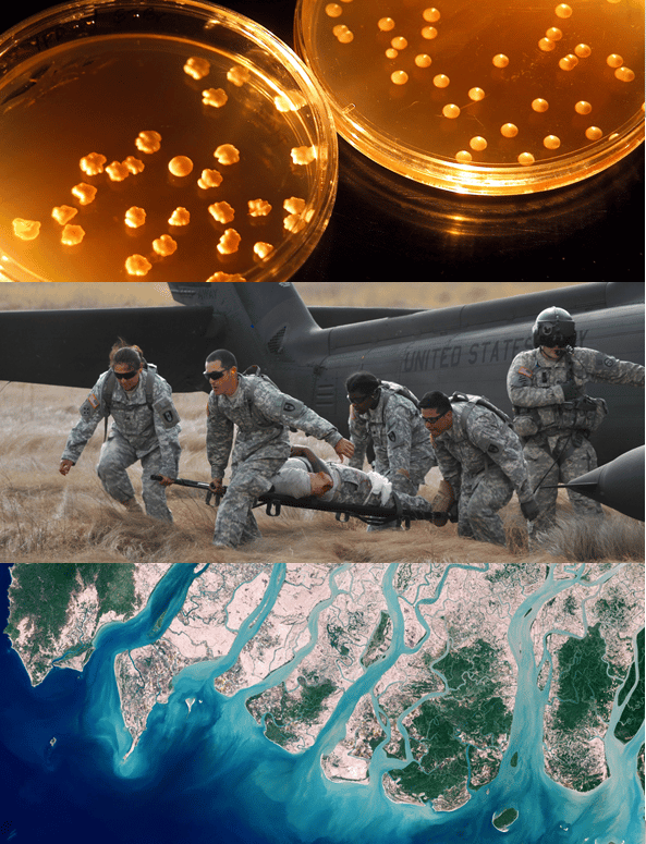 DARPA's Biological Technologies Office will explore the increasingly dynamic intersection of biology and the physical sciences (Image: DARPA)