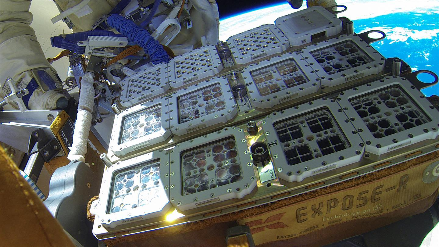Samples of microbes on the outside of the International Space Station, as part of the BIOMEX project