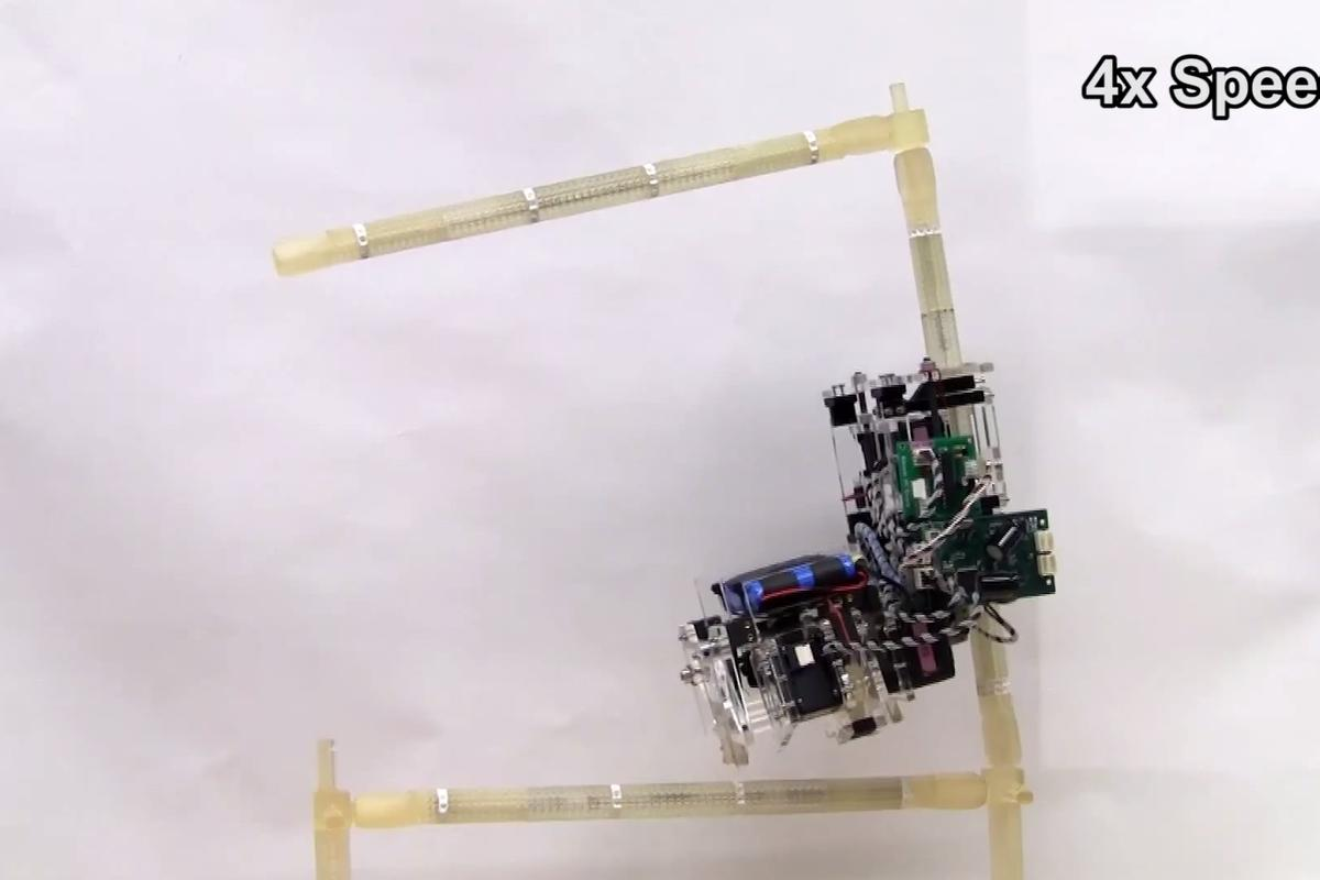 Researchers at Cornell University have made robots that can autonomously navigate a 3D truss structure, and rebuild it as it goes