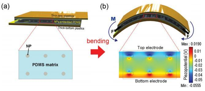 Bending the nanogenerator produces a difference of potential between the two electrodes (Image: KAIST)