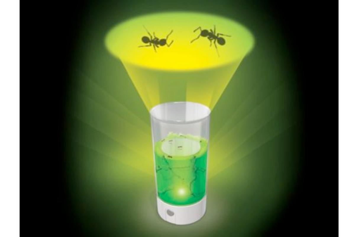 Ant Farm Revolution contains an LED lamp, which allows users to project images of the ants onto their ceiling