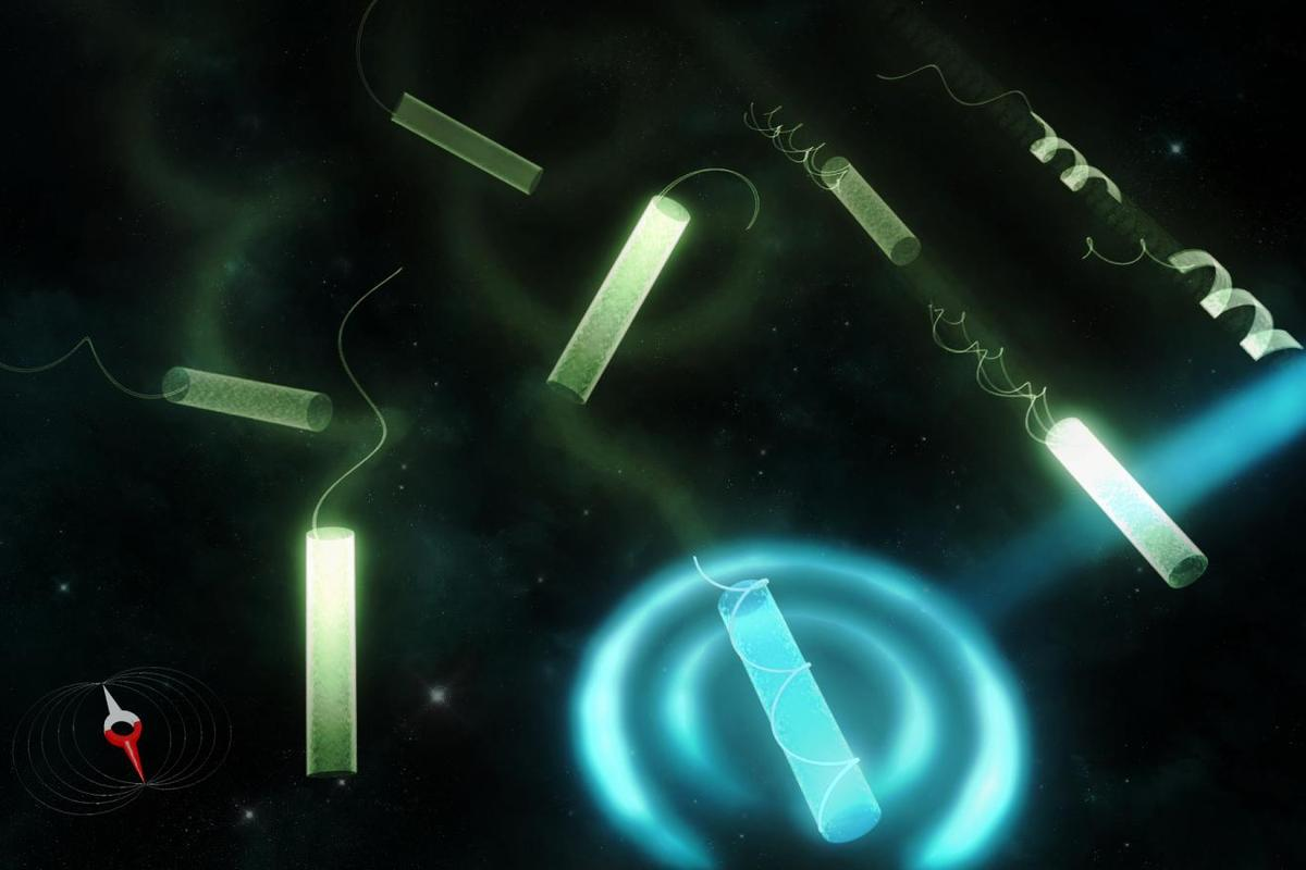 The microbots are powered and controlled by electromagnetic fields and shift shape when heated by a laaser beam