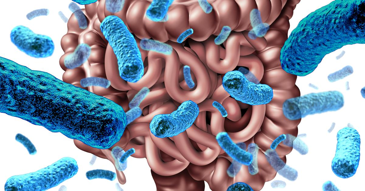Microbiome found to influence gut serotonin production and blood sugar levels