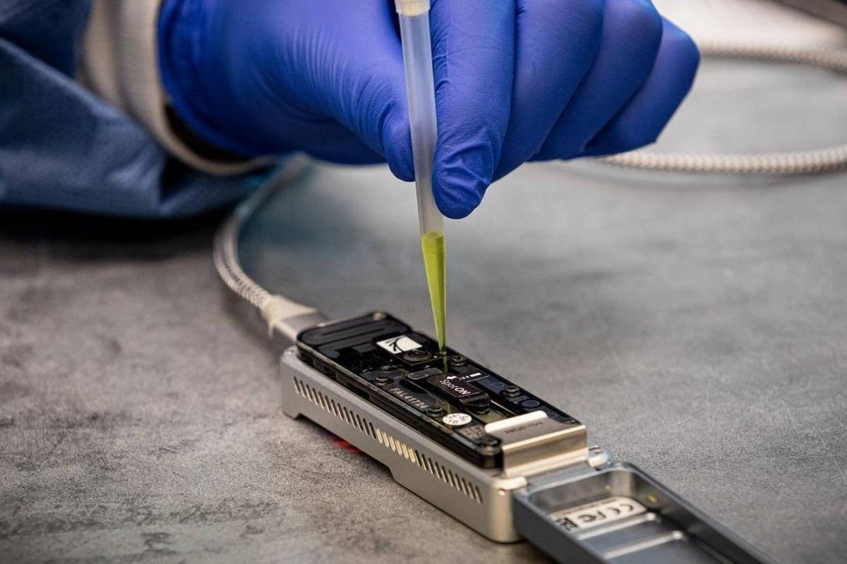 These portable nanopore sequencers can now get useful results much faster thanks to software advances from a team at Johns Hopkins University