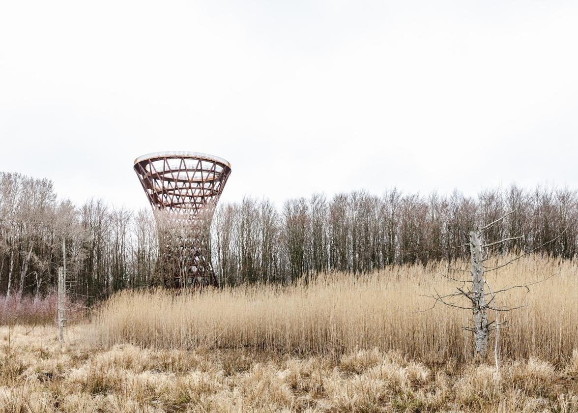 Camp Adventure Tower is reached by a 900-m (almost 3,000-ft)-long zigzagging pathway through the forest