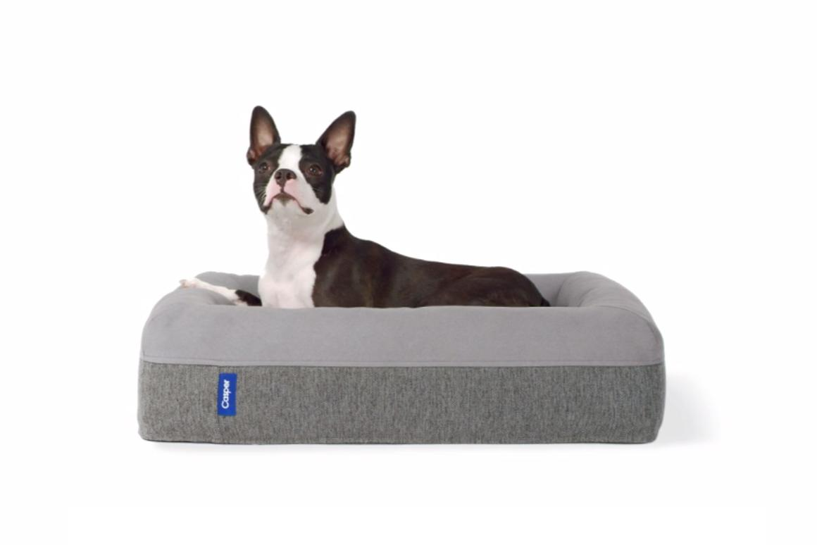 The Casper Dog Mattress aims to give pampered pooches a good night's sleep