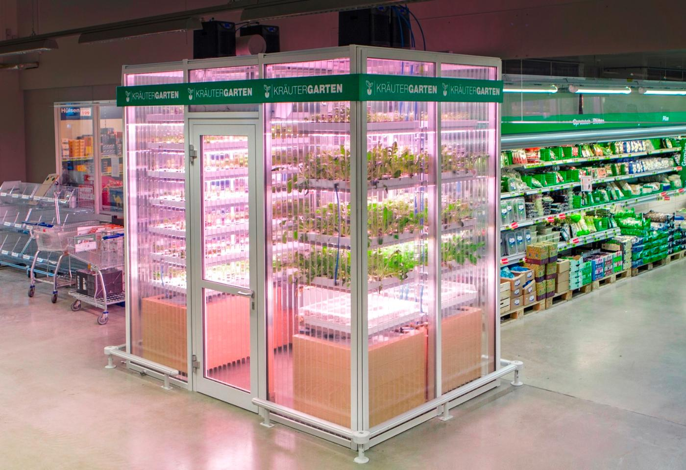 The INFARM is part of a pilot project at the METRO Cash & Carry wholesale store in the Berlin district of Friedrichshain