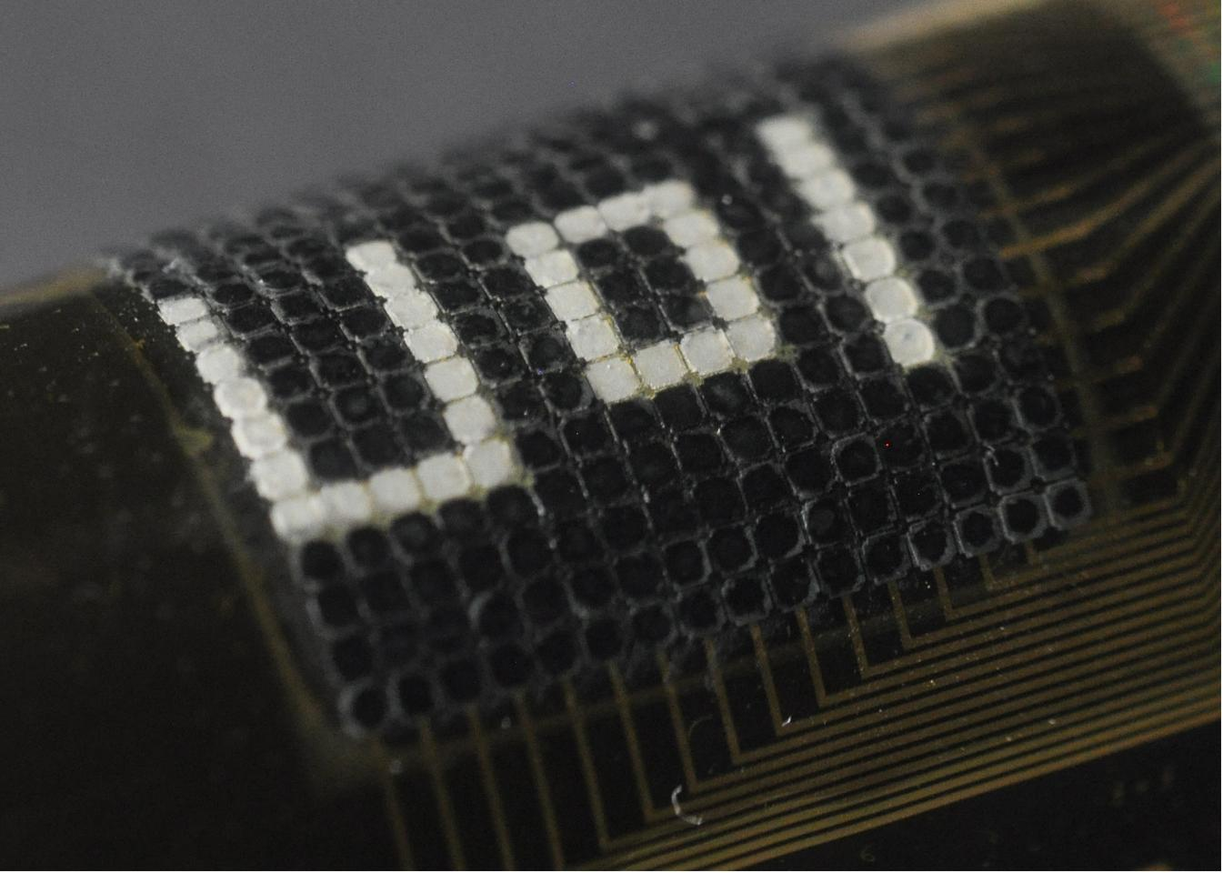 A flexible artificial skin is designed to wrap around objects and autonomously camouflage itself (Photo: University of Houston)